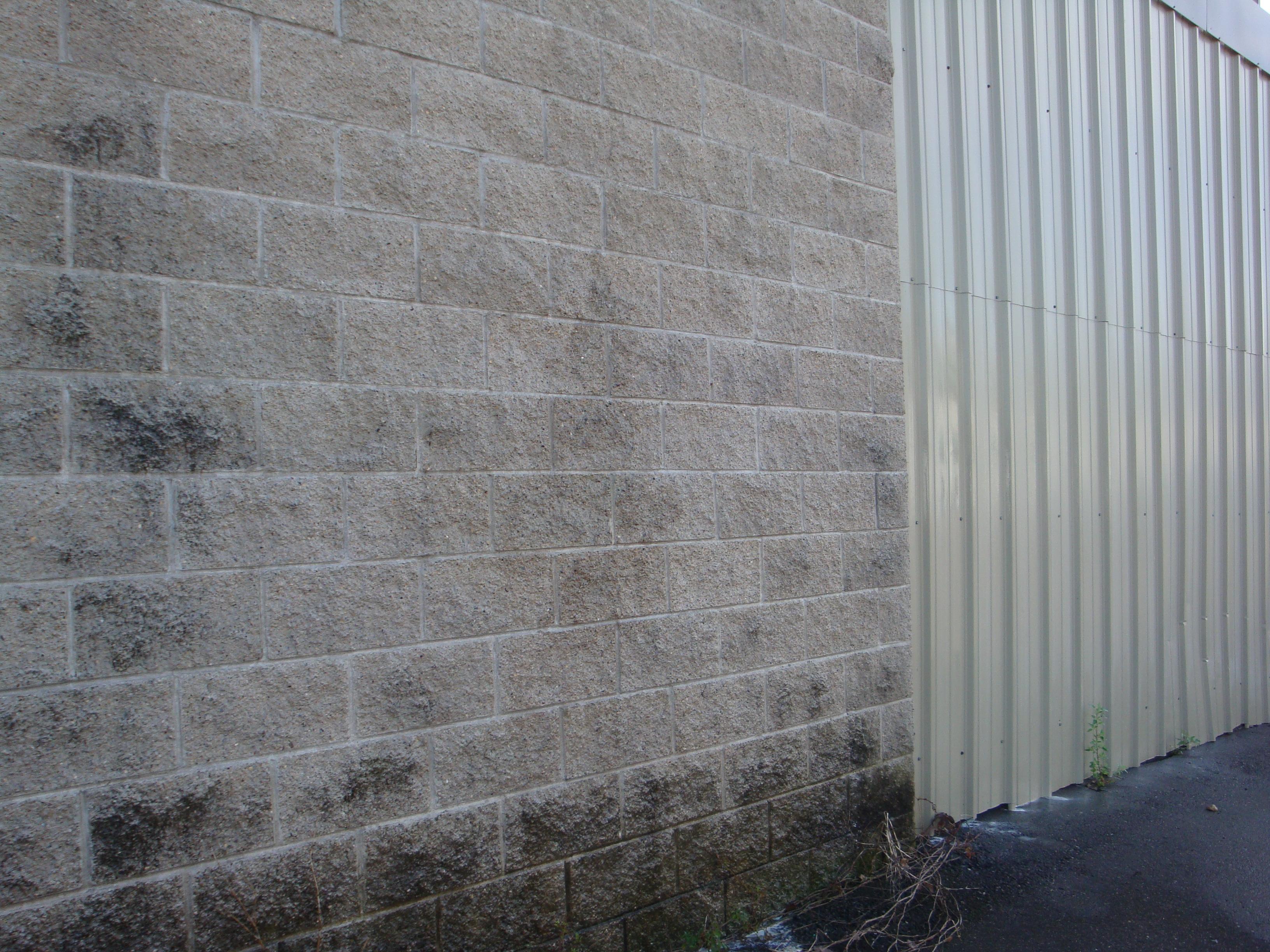 Elephant Snot - Split face cinder block - Apartment Building