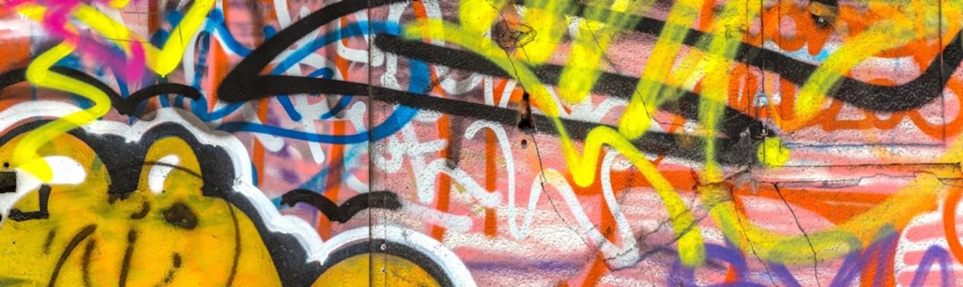Shadow Max® Graffiti Remover | Graffiti Solutions